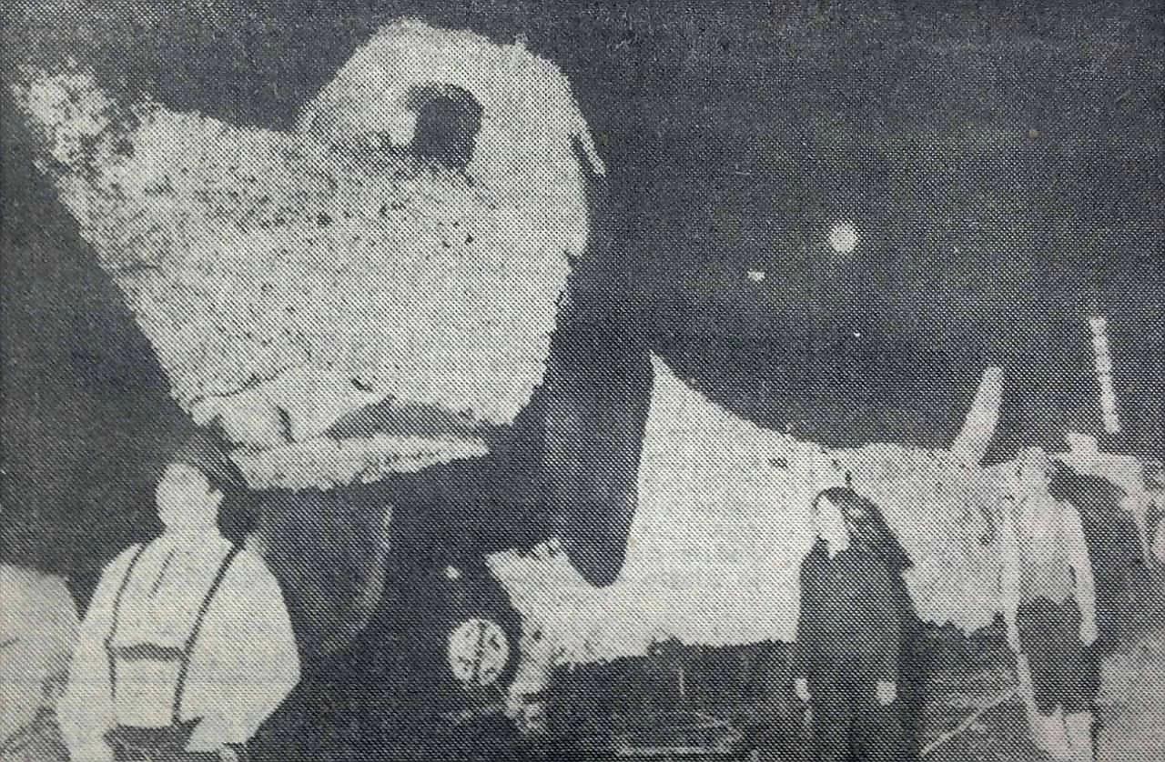 Imagen del desfile. El primer tirolés de la foto es el voluntario Walter Hellwig